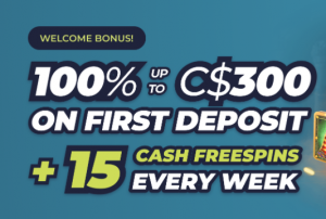 Review about casinoin